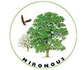 Mironous